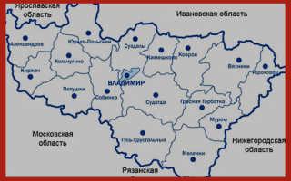 Владимирским пенсионерам сохранили региональные льготы