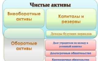 Методика расчета и анализа чистых активов организации